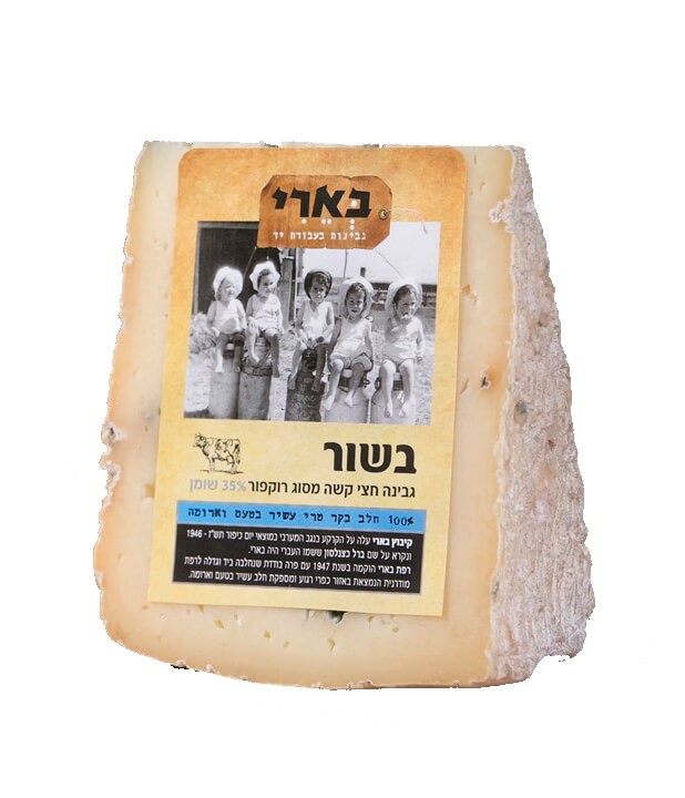 גבינה בשור